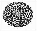 AR64 multi petel flower